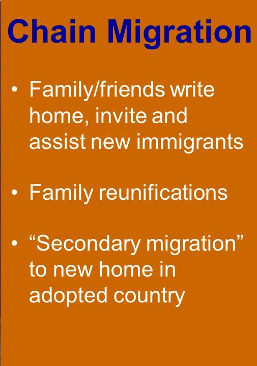 UKIP immigration and chain migration