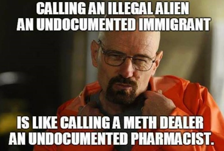 Politically Correct words: Calling an illegal alien an undocumented immigrant is like calling a meth dealer an undocumented pharmacist.